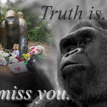 GOOD NIGHT SWEET HARAMBE  by Newplort