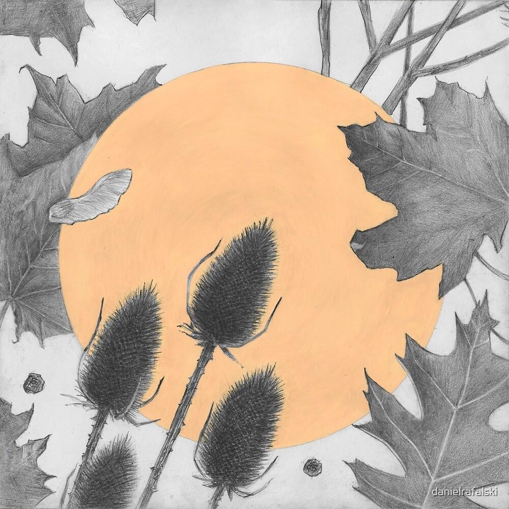 Autumn by daniel rafalski