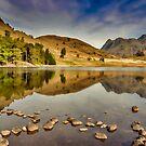 Reflections Blea Tarn by Trevor Kersley