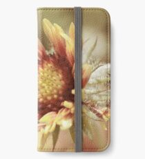 Gaillardia iPhone Wallet/Case/Skin