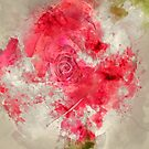 Red Rose Watercolor by TinaGraphics