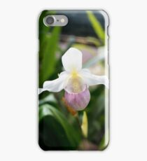 Beautiful Orchid iPhone Case/Skin