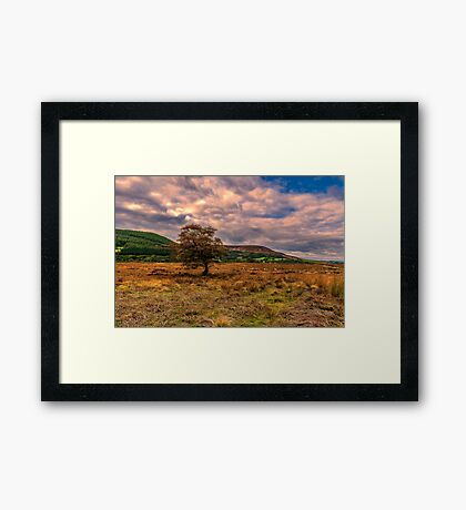 North Yorks Moors Framed Print