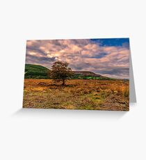 North Yorks Moors Greeting Card