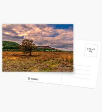 North Yorks Moors Postcards