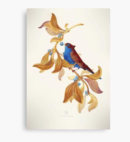 Blue birds song Canvas Print
