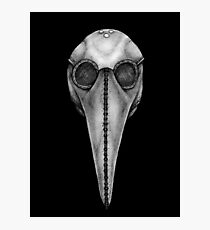Plague Doctor's Mask Photographic Print