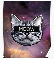 Censor Cat Poster