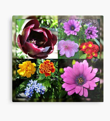 So lange, Frühling! Hallo, Sommer! Sonnenschein-Blumen-Collagen Metallbild