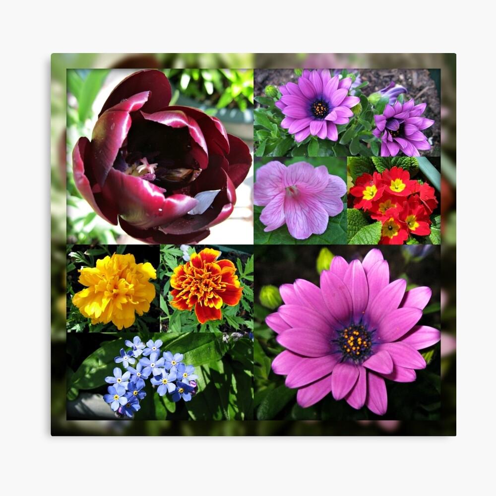 So lange, Frühling! Hallo, Sommer! Sonnenschein-Blumen-Collagen Leinwanddruck