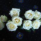 Angelic Roses von BlueMoonRose