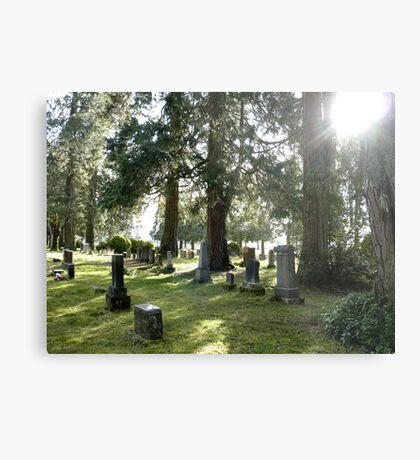 Fair Oaks Cemetery Metal Print