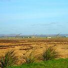 Farmland on the Isle of Lewis von BlueMoonRose