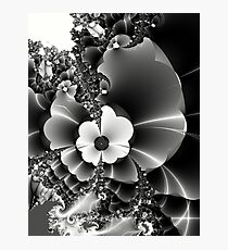 I send you wild fractal flowers... Photographic Print