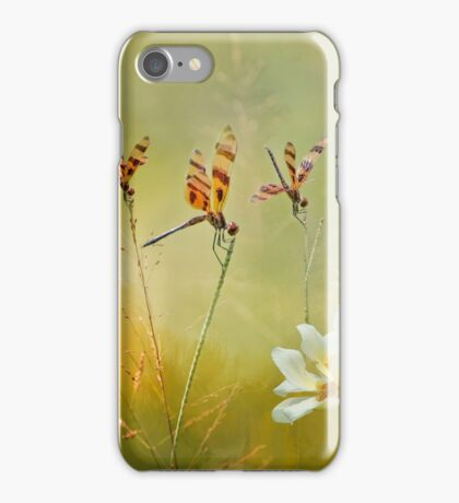 Summer Symphony iPhone Case/Skin