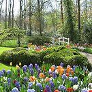 Little Bridge - Keukenhof Gardens von BlueMoonRose