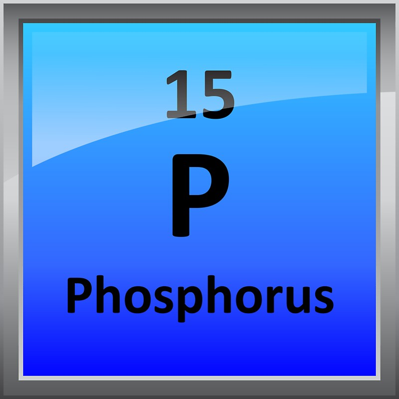 Phosphorus element tile periodic table stickers by sciencenotes phosphorus element tile periodic table by sciencenotes urtaz Image collections