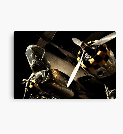 Beautiful Plane black and gold  Canvas Print