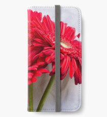 Red gerberas over white tablecloth iPhone Wallet