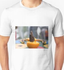 Butterfly feeds on fruit in the butterfly dome at RHS Hampton Court Palace  Unisex T-Shirt