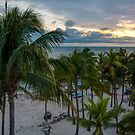 Palms at Key West by thatche2