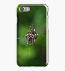 2 - Ragno iPhone Case/Skin