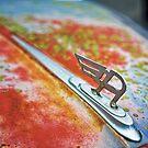 Rusty Austin A40 by Delfino