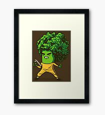 Brocco Lee Vol. 2 Framed Print