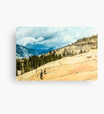 Olmsted Point Yosemite Metal Print