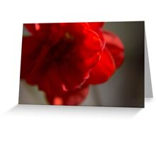 Abstract Red Flower Card Greeting Card
