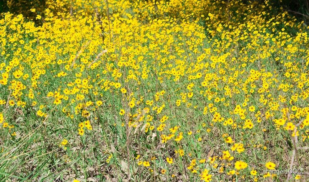 Yellow Flower Field by arangel1000