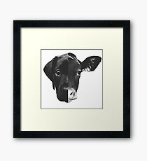 Animal Equality - (Black & White) Framed Print
