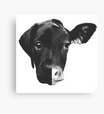Animal Equality - (Black & White) Canvas Print