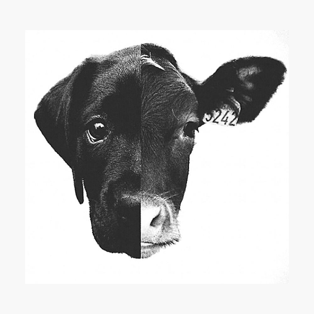 Tiergleichheit - (Schwarz-Weiß) Fotodruck