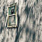 The Side Window by Scott Mitchell
