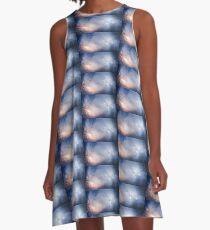 Roosting A-Line Dress