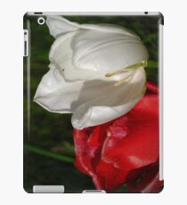 tulips red and white iPad Case/Skin