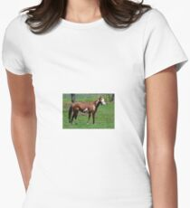 Horse in a Pasture Womens Fitted T-Shirt