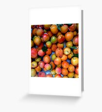 First Apricots of 2016 Greeting Card