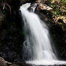 Howeland Waterfalls by Don Rankin