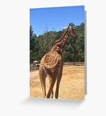 Tail Swinging Giraffe  Greeting Card
