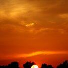 Kentucky Sunset by Don Rankin