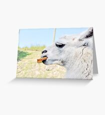 Whole Wheat Please! Greeting Card