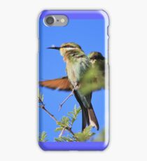 Bee-eater - African Wild Birds - Colors of Flight iPhone Case/Skin