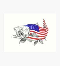 Lámina artística American Steel Head Salmon
