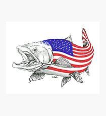 Lámina fotográfica American Steel Head Salmon
