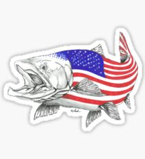 American Steel Head Salmon Sticker