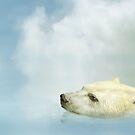 Polar Bear by Paul Fleet