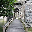 Beaumaris Castle Bridge by CreativeEm