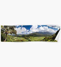 Hanalei Valley's taro fields in Kauai, Hawaii Poster